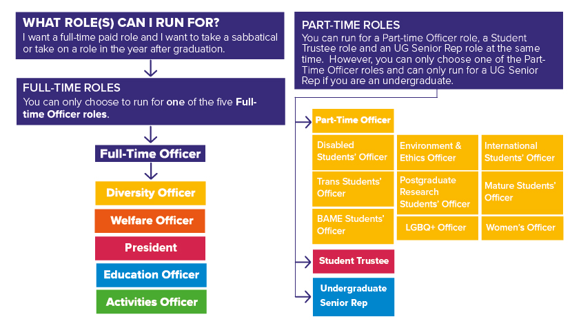 A diagram showing what roles different students are eligible for in the RUSU Main Elections